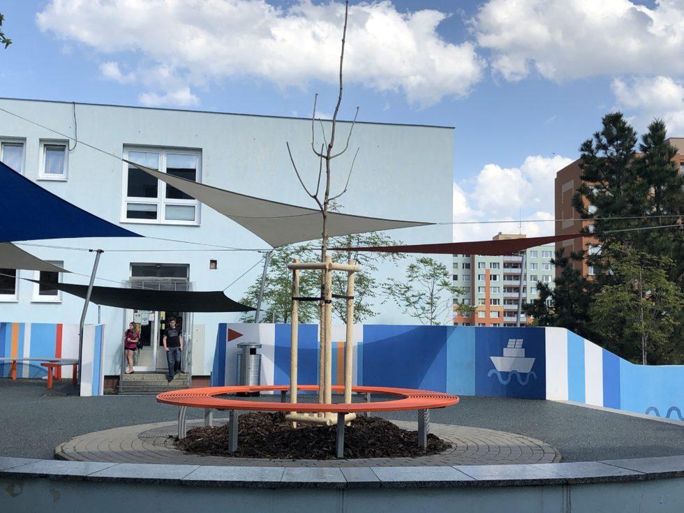 Katalpa před školou