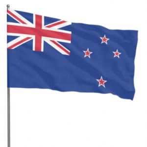 Novozélandský mezinárodní den